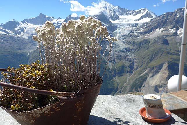 hochtour-wallis-sommer-2016-bergfuehrer-gregor-braun-644x431px-030