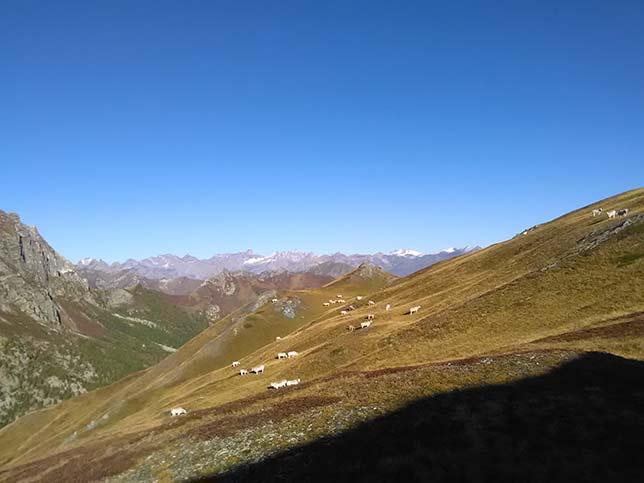 2019-bergwanderung-valle-maira-oktober-IMG_20191002_092208-644x483px